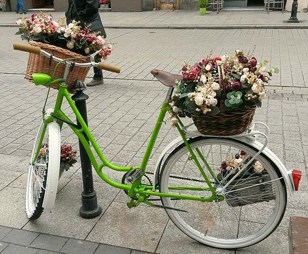 Cracovia - Bici con flores_opt