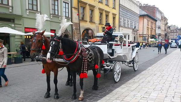 Cracovia - Calesas